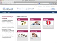 Summa Adviesgroep - folder